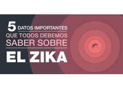 Top 5 Things Everyone Needs to Know about Zika